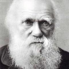 Quando la forma ignorò Darwin: introduzione alla scienza della morfologia. Parte 1