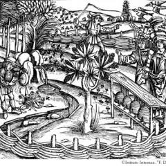 Virgilio e le Georgiche, capolavoro ispirato alle api